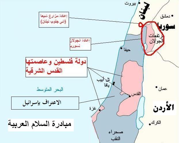 ما هي المبادرة العربية 2002-2010؟
