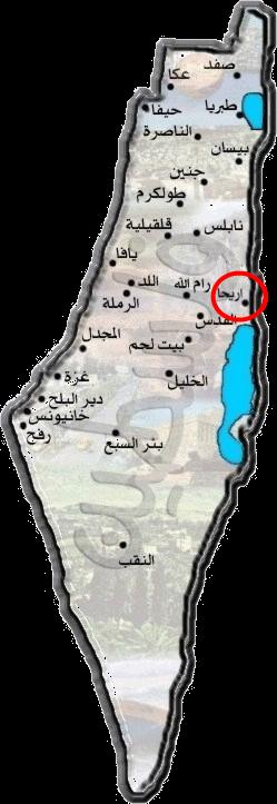 تاريخ فلسطين | مقتطفات من برنامج خط الزمن (الكنعانيون)